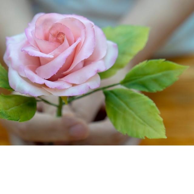 Простая и дешёвая цветочная мастика - Я ТОРТодел
