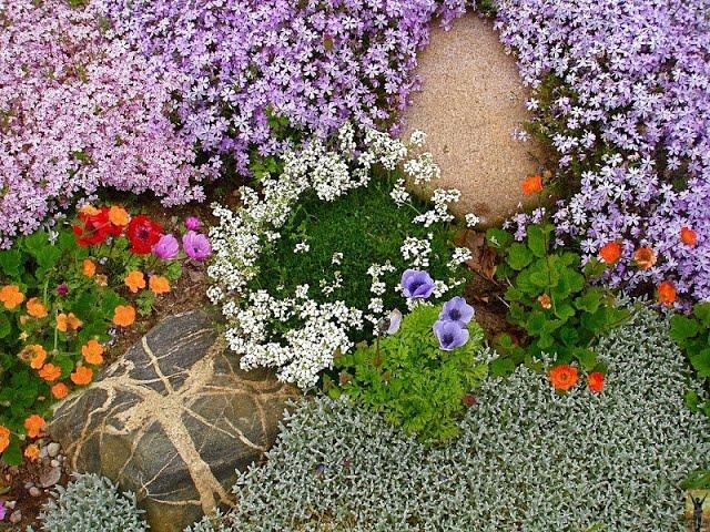 Во саду ли в огороде Юлия Минаева