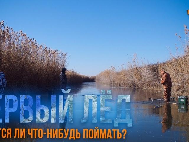 Первый лёд 2019-2020   Столько рыбы мы еще не ловили   Зимняя рыбалка в Астрахани