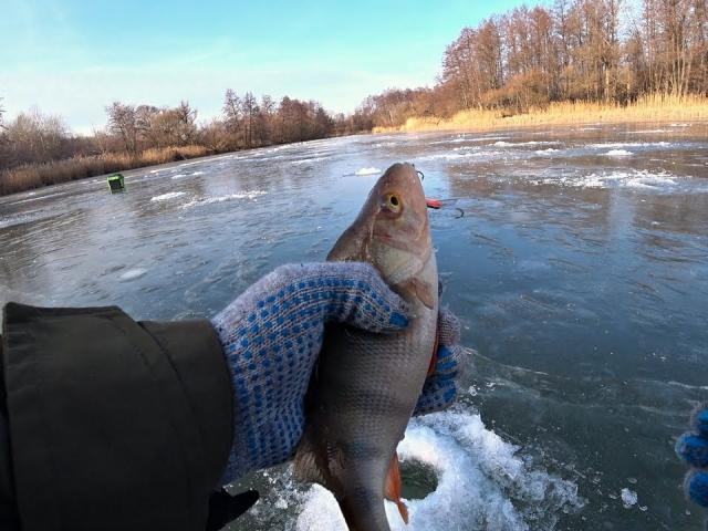 Ловля окуня на балансир. Зимняя рыбалка 2019-2020