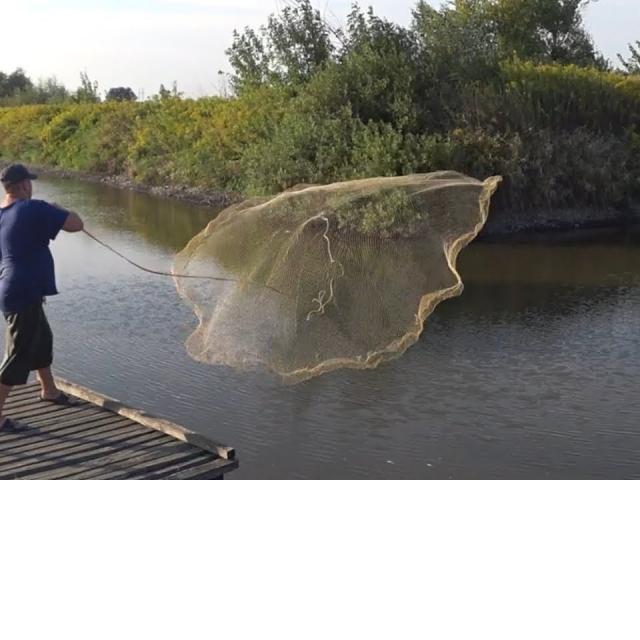 Зарыбленный пруд Рыбалка Кастинговой сетью