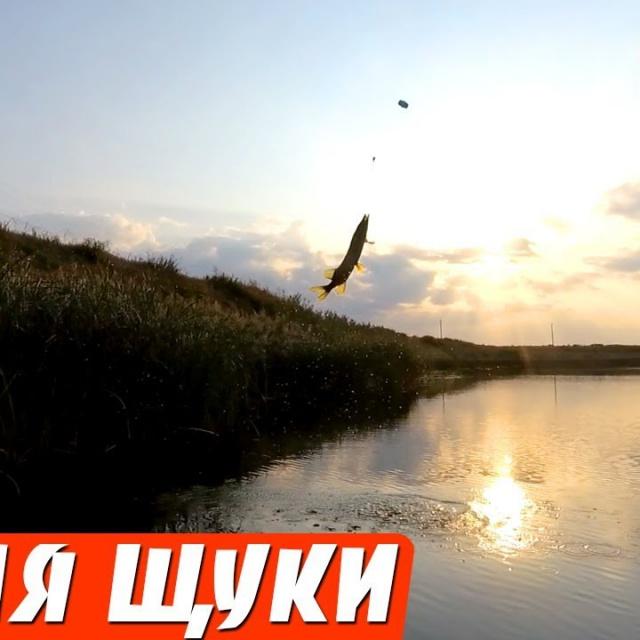Ловля щуки на Поплавок в сентябре Рыбалка на щуку осенью на живца