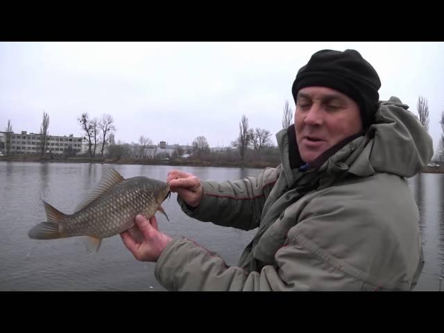 Река Стугна Ловля крупного карася Рыбалка в Украине