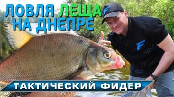 Тактический фидер - ловля крупного леща на Днепре! Рыбалка на леща!
