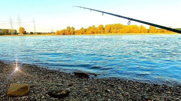 Фидерная рыбалка осенью 2019 г