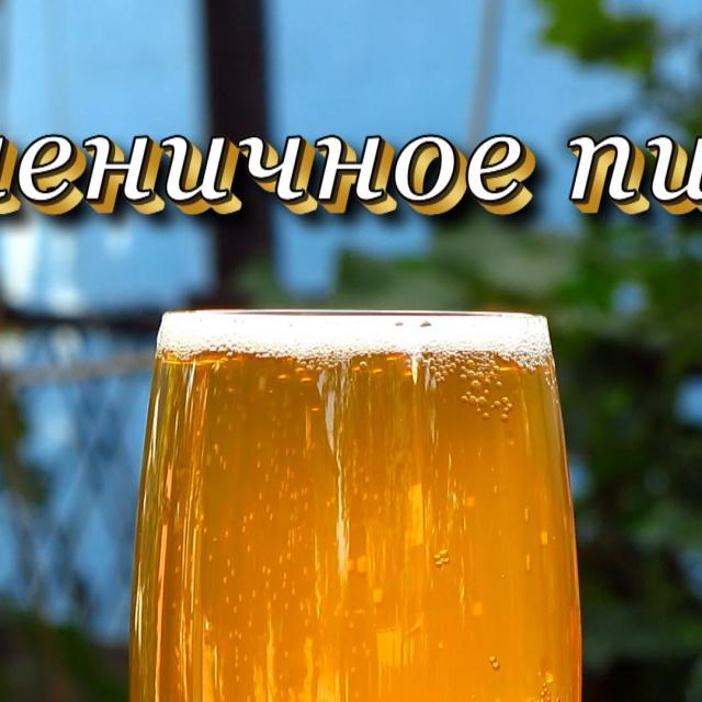 Рецепт домашнего пшеничного пива