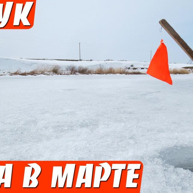 Последний лед Щука на жерлицы