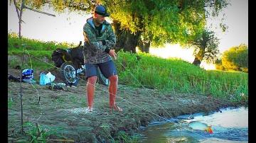 Рыбалка на закидушки Крупный карась сазан Жмых макуха Попал в ДТП на мотоцикле ночью