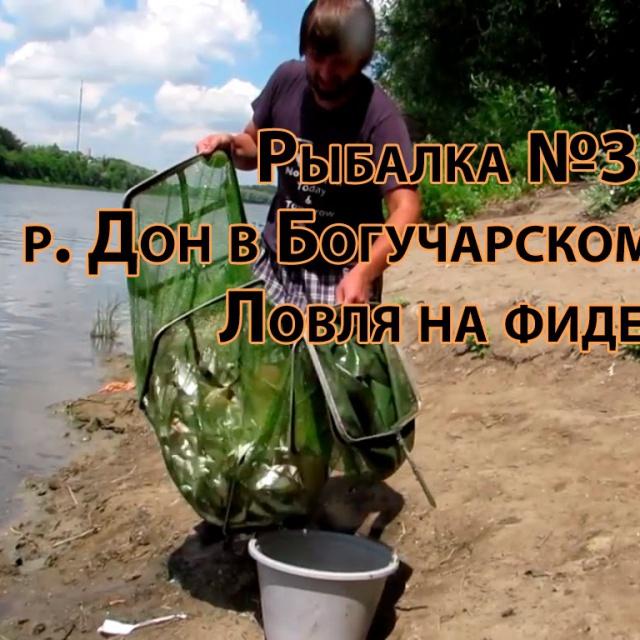 Рыбалка в Воронежской области на реке Дон в Богучарском районе