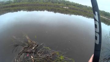 Рыбалка.Ловля рыбы поплавочной удочкой на реке.