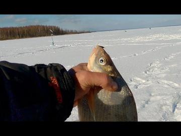 Зимняя рыбалка на Рузском ВДХ с ночёвкой 2018 г