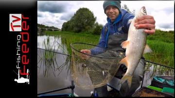 ✅ Vlog #14.Рыбалка на фидер. Ловля плотвы и леща на реке осенью 2017.Подуст.
