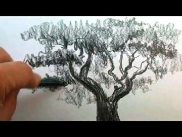 КАК научиться РИСОВАТЬ. Рисуем ДЕРЕВО карандашом #2