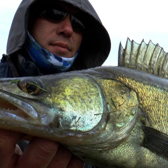 Видео про рыбалку, ловля судака