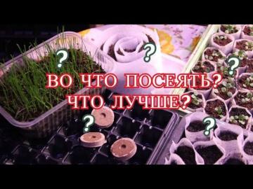 Юлия Минаева Крепкая Рассада Во Что Посеять Что Лучше
