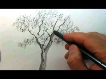 Рисуем ДЕРЕВО карандашом #1