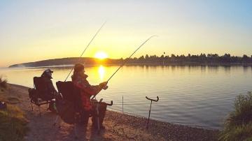 Река Волга. Красота, а не рыбалка! Ловля на фидер в августе.