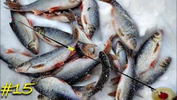 Ловля на безмотылку. Плотва на гвоздешарик и чертик. Зимняя рыбалка 2020.