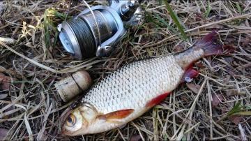 НА ЧТО ЛУЧШЕ КЛЮЕТ РЫБА ? Ловля на попла- поппер.What is better pecking fish Catching popper.