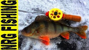 ОКУНЯ КАБАНЫ Днепровских заливов | Зимняя Рыбалка в феврале 2018