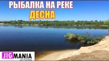 Рыбалка на реке ДЕСНА. Ловля ЩУКИ   ОКУНЯ   СУДАКА [JIGMANIA]