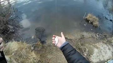Кроме уклейки никто не клевал - рыбалка не удалась