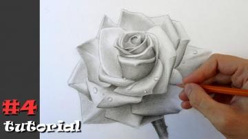 Как нарисовать розу/Учимся рисовать розу карандашом