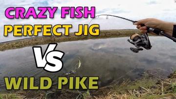 БЕЗУПРЕЧНЫЙ ДЖИГ и РЫБАЛКА НА ЩУКУ 2019 после нереста! Тест спиннинга Crazy Fish Perfect JIG 76-L-T
