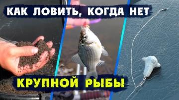 Рыбалка на фидер осенью / Как ловить, когда нет крупной рыбы...