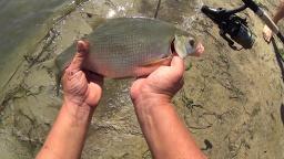 Рыбалка с ночёвкой на реке,уха и хорошее настроение | Дневник рыболова