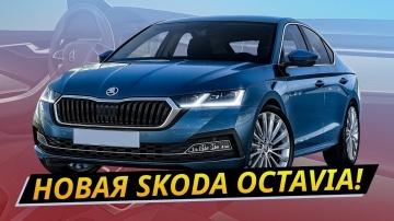 Какой получилась новая Skoda Octavia 2020 Своими глазами АВТО ПЛЮС