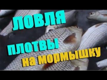 Зимняя рыбалка  Ловля плотвы зимой на мормышку