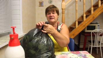 Юлия Миняева Подготовка клубники к посадке.