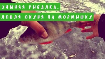 WhiteRiverUfa. Зимняя рыбалка. Ловля окуня на мормышку. Новогодняя рыбалка