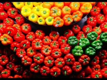 Посев перца на рассаду 2019 | Урожайный Огород