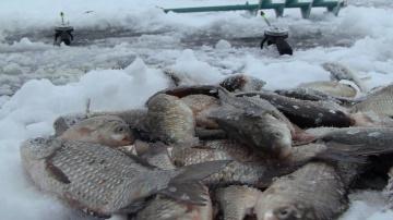 Зимняя рыбалка 2016-2017 открытие сезона(Дневник рыболова)