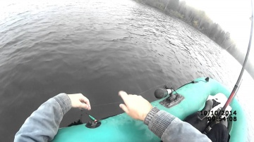 Ловля щуки на живца на поплавочную удочку осенью (видео-инструкция) Рыбалка 10 октября 2014