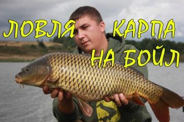 Ловля карпа на бойлы. Супер рыбалка, отличный улов!
