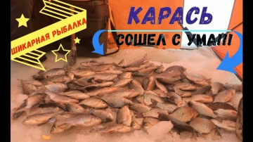 Бешеный клев КАРАСЯ зимой/Шикарная рыбалка/Ловля на мормышку