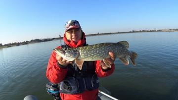 Ловля щуки осенью Джиг на водохранилище Рыбалка 2019