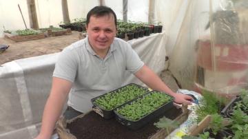 Выращиваете петунию?- обязательно сделайте с рассадой так!