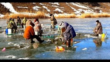 Эта ДИКАЯ ПЛОТВА топит УДОЧКИ В ЛУНКАХ.Зимняя рыбалка на РЕКЕ 2020