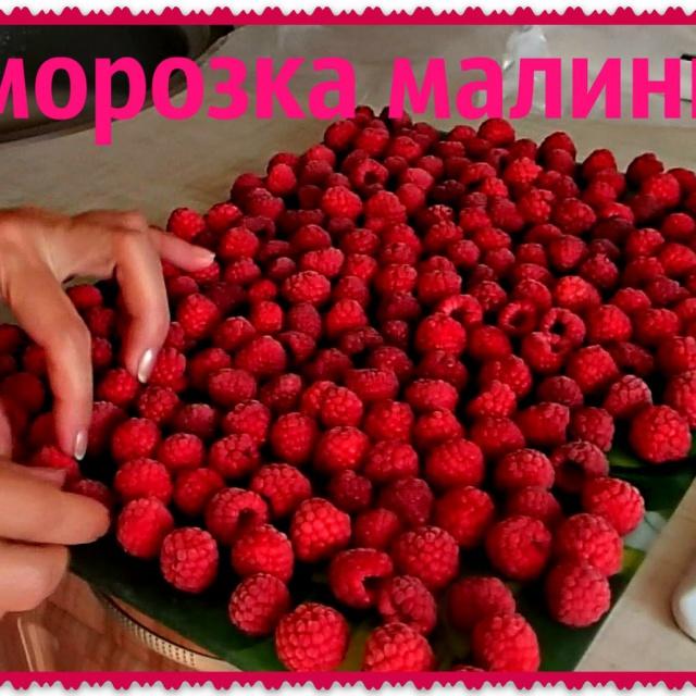 Ольга Уголок - Дача | Заморозка малины