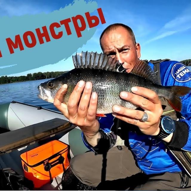 Окуни монстры атакуют Ловля крупного окуня в августе 2018 Простая рыбалка