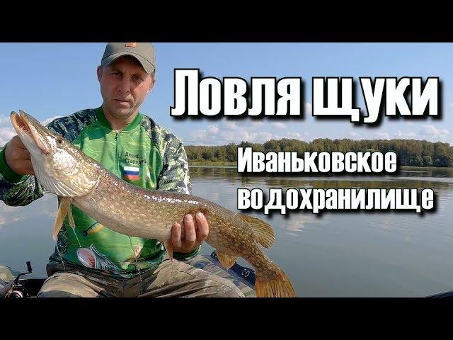 Ловля щуки.  Иваньковское водохранилище 2018