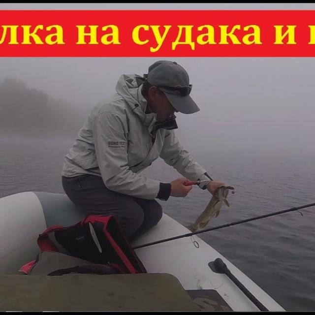 Рыбалка на судака и щуку - Вдруг уже клюёт | Простая рыбалка
