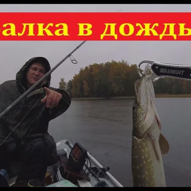 Как клюёт щука в дождь - эксперимент | Простая рыбалка