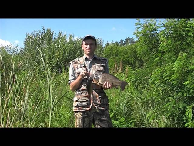 Ловля крупного карася на поплавок Рыбалка и ловля крупного карася