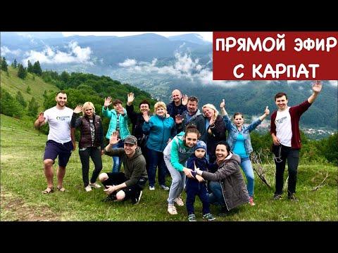 Ольга Матвей МЫ В КАРПАТАХ ПРЯМОЙ ЭФИР, В 16-00