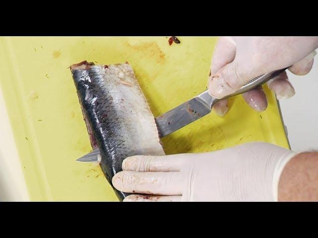 Как правильно разделать селёдку: 1-ый способ - ножом, не пачкая рук / Илья Лазерсон / Обед безбрачия